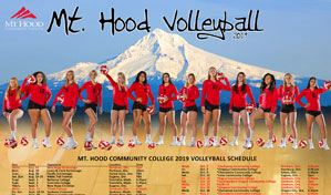 MHCC Volleyball 2020